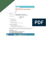 reactor estequiometrico isoter.docx