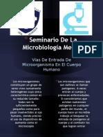 Seminario de La Microbiologia Medica
