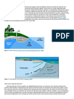 What is Saltwater Intrusion