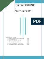 Citrus Pest