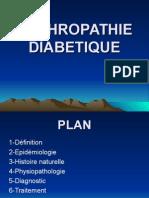 Nephropathie Diabetique( Topo 2)