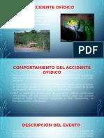 accidente OFIDICO.pptx