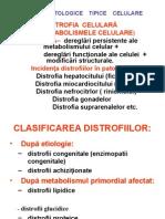 3. Procese Patologice Tipice Celulare