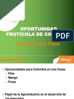 Biblioteca_184_Oportunidad Frutícola de Colombia