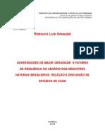 ADVERSIDADES DE MAIOR GRAVIDADE  E FATORES DE RESILIÊNCIA NO CENÁRIO DOS DESASTRES NATURAIS BRASILEIROS