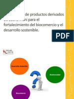 productos derivados+sacha inchi