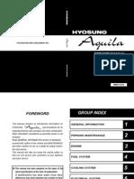 Hyosung Aquila 650 Manual de Reparatie