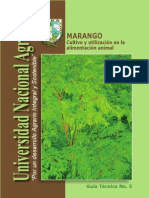 1-El-Marango 2