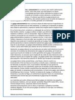 Galgas - lift, drag, hinge..pdf