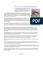 american kestrel factsheet 1  4