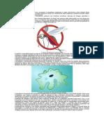 texto informativo -doenças
