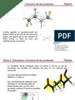 Tema 2.2. Pèptids.tecniques de Separacio de Proteines