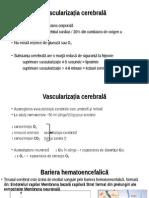 Curs Vascularizatia Cerebrala
