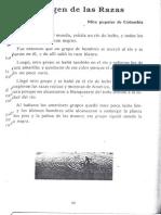 Anexo de Lectura 1