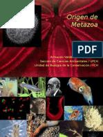Origen Metazoa-BIO 3