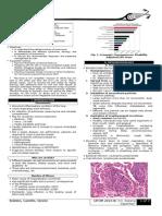 [OS 213] LEC 15 Pneumonia (B)-1