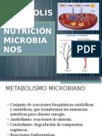 u3 Nutrición y Metabolismo