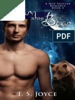 Return to the Bear - (Bear Valley Shifters 3) - T.S. Joyce