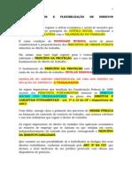 Flexibilização Dos Direitos Trabalhistas - 27.08.14