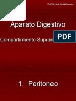 1.3 Aparato digestivo compartimiento supramesolócilo.ppt