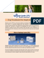 Dog Treatment for Staph Infection