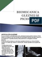 Curs_04_Biomecanica_anII_BFKT.ppt