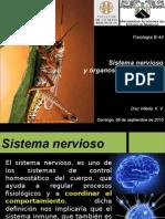 SNC y organos sensoriales de insectos