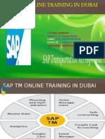 sap tm online training in dubai.pptx