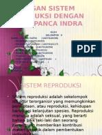 Hubungan Sistem Reproduksi Dengan Sistem Panca Indra
