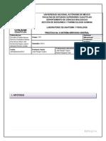 Informe 5 - Sistema Somato-sensorial (9)