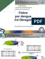 Dengue 2014 Cajeme CIERRE
