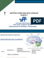SN_1_site.pdf