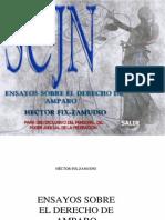 Ensayos sobre el Derecho de Amparo Hector Fix Zamudio.pdf
