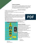 Microscopia Electrónica de Barrido
