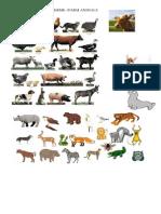 Animales Salvajes y de Granja