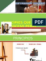 PRINCIPIOS DEL DERECHO PROCESAL PENAL