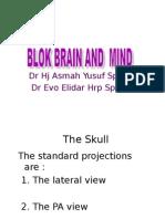 Blok Brain and Mind