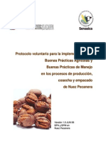 pecano implementacion
