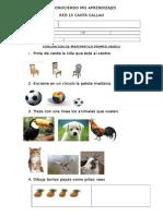 Reconociendo Mis Aprendizajes 17 de Julio Matematica