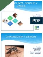 Charla Chikungunya, Dengue y Ebola