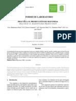 INFORME-MAYONESA-1.pdf