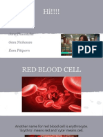 copy of red blood cell presentation 10-06