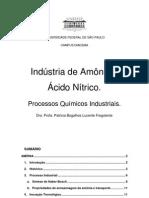 Produção de Amônia e Ácido Nítrico