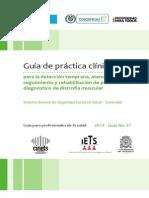 GPC-DM Para Profesionales de La Salud