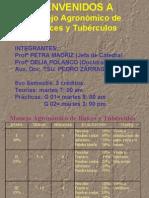 Clase-raices-y-Tuberculos.pdf