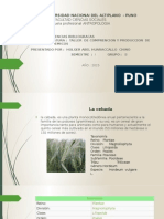 Universidad Nacional Del Altiplano Puno Exposicion (1)