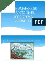 Ser Humano y Su Impacto en El Ecocistema