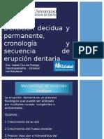 Denticion Desidua y Permanente
