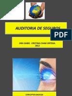 AUDITORIA_SEGUROSS