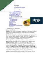 010 El Cultivo de La Papaya